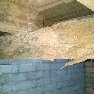 termite_damage_img2